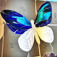 蝶々の鱗粉